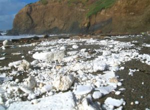 styrofoam pollution washes up on the beach