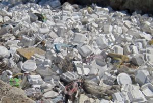 Styrofoam Pollution and what to do about it